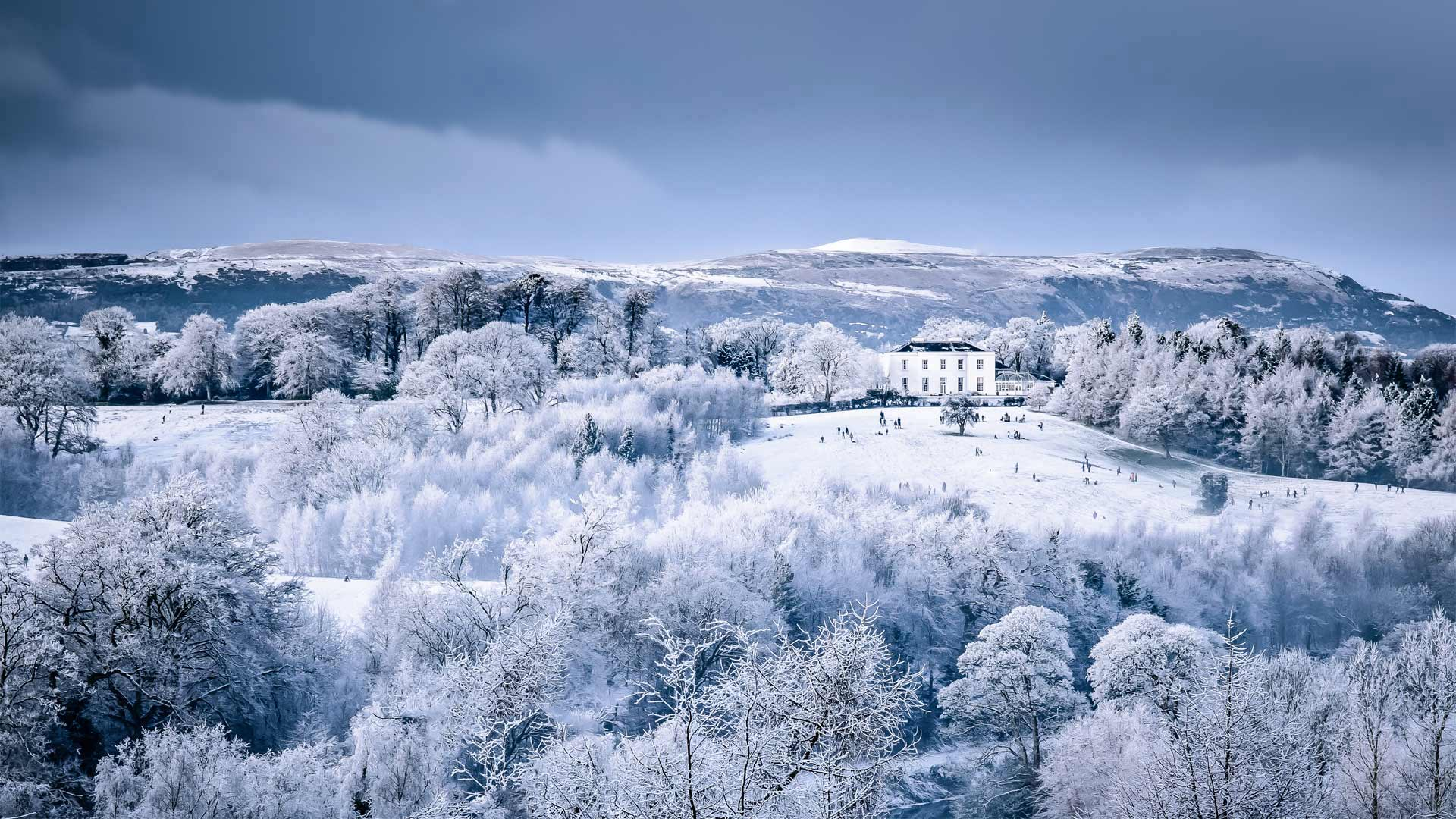Barnett Demesne公园中在白雪覆盖的山坡上玩耍的一家,北爱尔兰贝尔法斯特