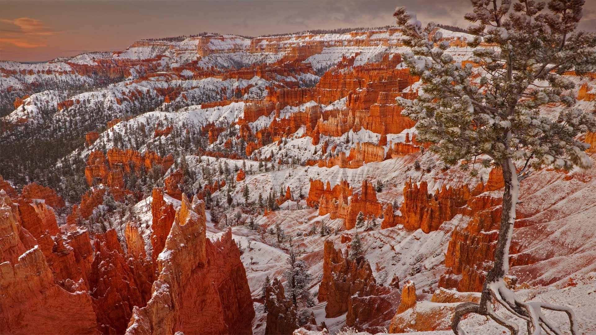 布莱斯峡谷国家公园的冬天,犹他州